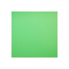 Фон Виниловый Зеленый (пластик) 2,75х6,0м (500g)